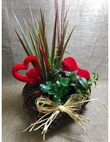 Corazón de Plantas mod.1 San Valentín