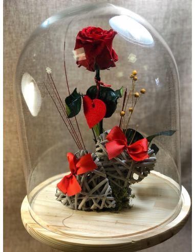 Urna de cristal con rosa roja